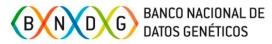 BNDG logotipo
